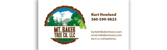 Mt Baker Tree Co Business Cards