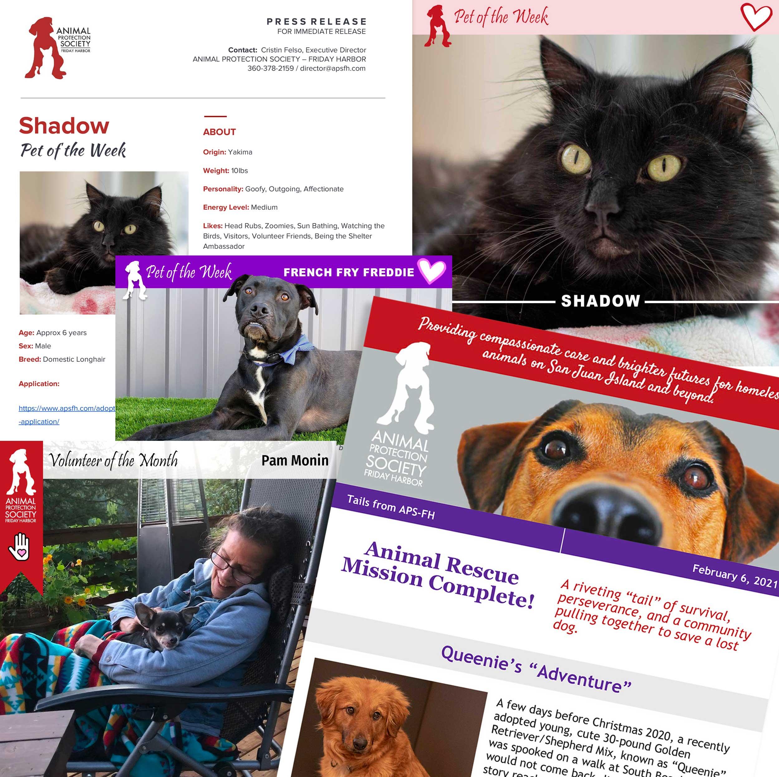 APSFH-CCnewsletter-SocialMediaAds-PressRelease