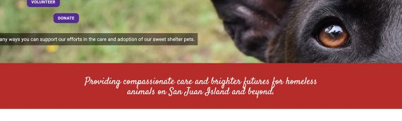 Animal Protection Society – Friday Harbor